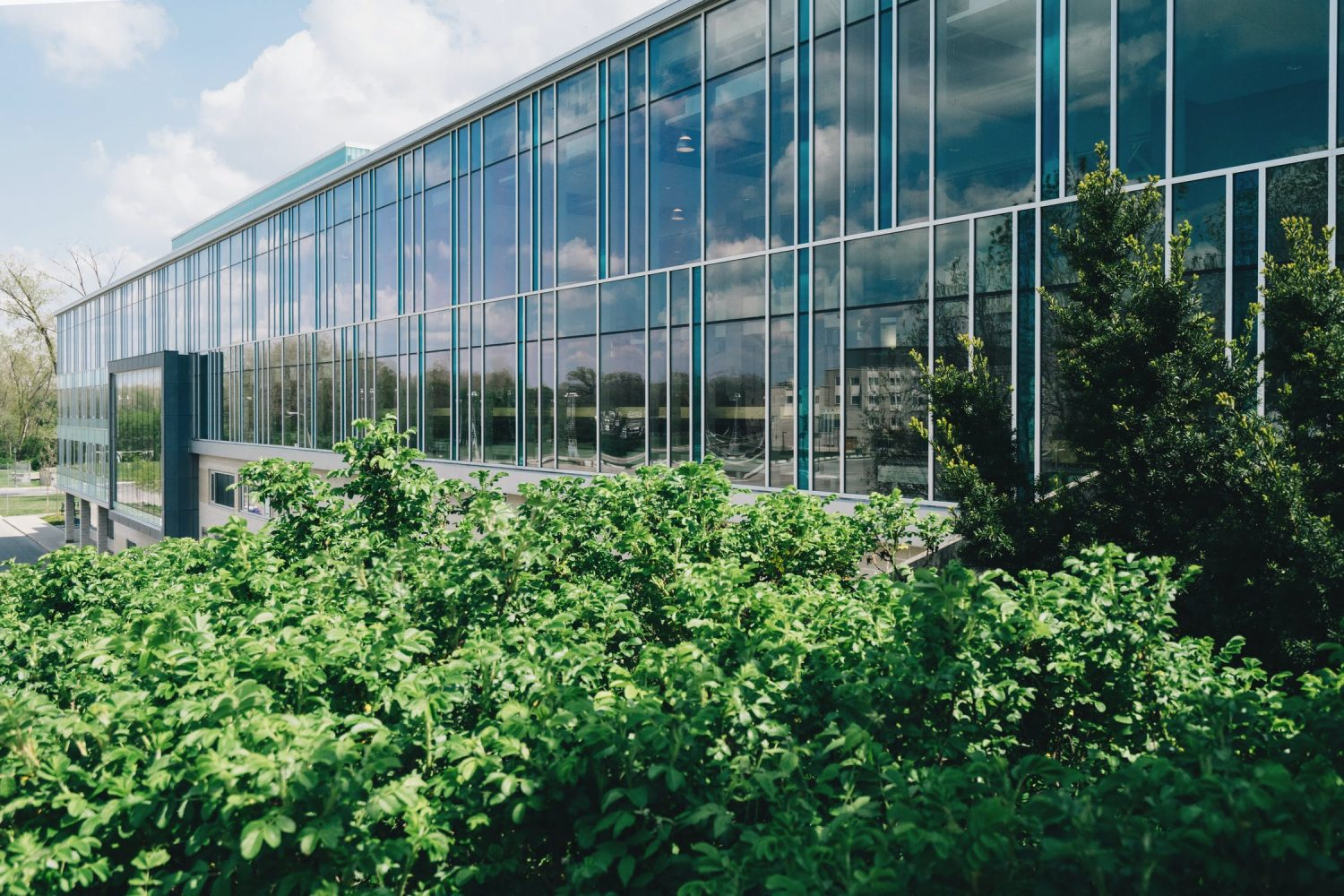2021 Construction Trends Facilitated By Commercial Window Films - Commercial Window Film in Indianapolis, Indiana